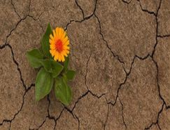 Umut İman Hayatımızın Enerjisidir