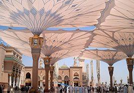 Büyük Şemsiye Küçük Şemsiye